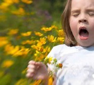 Autism and Allergies